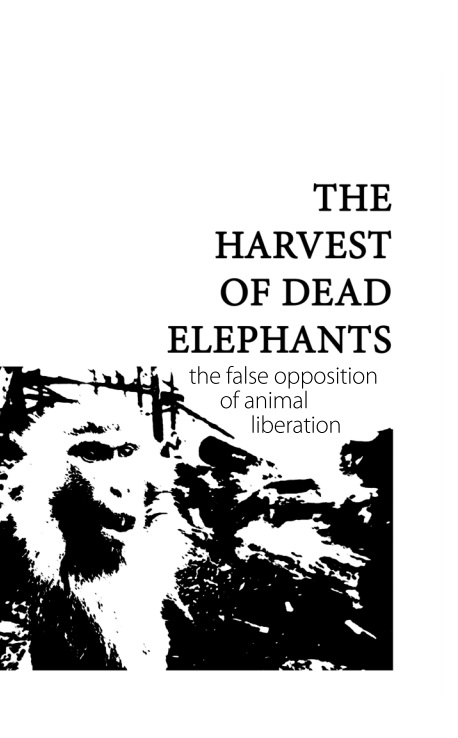 The Harvest of Dead Elephants